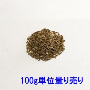 種子ケンタッキーブルーグラス ヌーブループラス100g 5〜10平米分|donoubukuro
