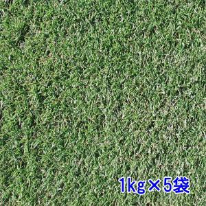 種子ペレニアルライグラス レグゼット5kg 80〜200平米分|donoubukuro