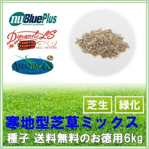種子 寒地型芝草ミックス3kg 75〜100平米分|donoubukuro
