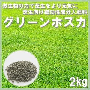 肥料 グリーンホスカ 2kg|donoubukuro