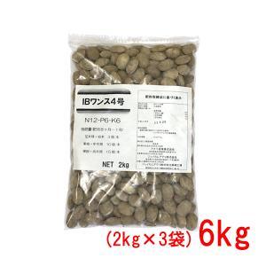 肥料 IBワンス4号 6kg(2kg×3袋)