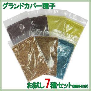 お試し種子セット(肥料付き) グランドカバー向け7種 送料無料