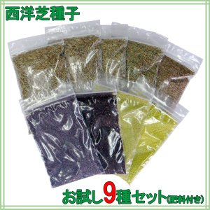お試し種子セット(肥料付き) 西洋芝9種 送料無料