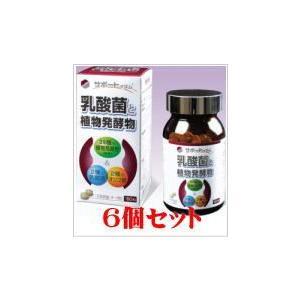 天野サポートイズム乳酸菌と植物発酵物180粒お得な6個セット doradora-drug