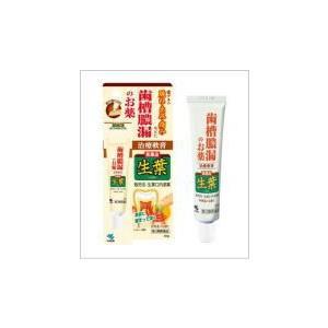 生葉口内塗薬 20g【第3類医薬品】|doradora-drug