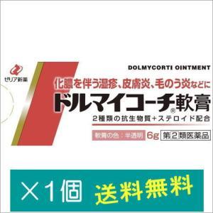 ドルマイコーチ軟膏6g【指定第2類医薬品】