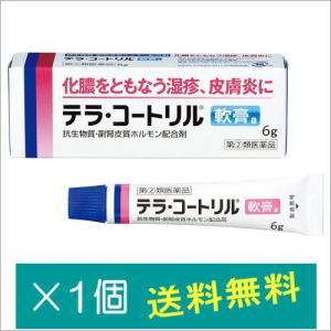 テラ・コートリル軟膏a6g【指定第2類医薬品】