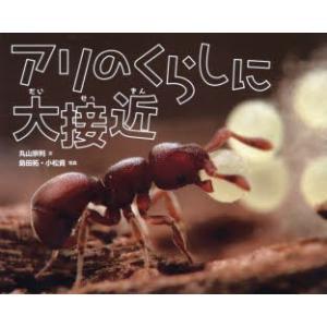 新品本/アリのくらしに大接近 丸山宗利/文 島田拓/写真 小松貴/写真