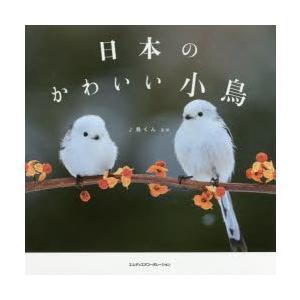 新品本/日本のかわいい小鳥 ♪鳥くん/監修|dorama
