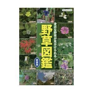 新品本 野草図鑑 身近な野草が見分けられる 日本の野草を季節ごとに網羅した野草図鑑の決定版!の商品画像|ナビ