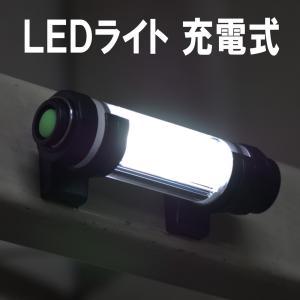 LEDライト 充電式 作業灯 釣り 投光器 照明 完全 防水 5500K 白色光 100LM 防塵防水IP68 充電器 ランタン ハンディライト LEDランプ アウトドア 防災 災害|dorarecoya