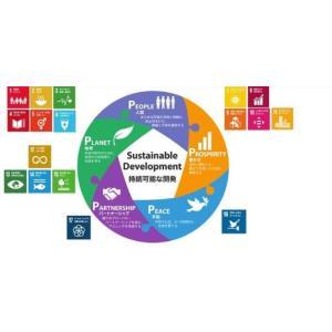 SDGs バッジ ピンバッチ バッヂ「正規品/国連公式最新仕様」ピンバッジの留め具 銀色 エスディー...
