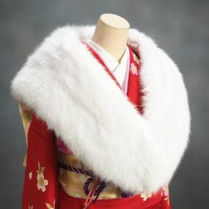 ショール 成人式などの振袖に最適なフェイクファーストール 和洋兼用 シルバーホワイト|doresukimono-kyoubi