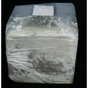 菌糸ブロック YSO−3500ccオオヒラタケ(クヌギ100%)|dorukusu