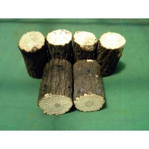 産卵木 (良質クヌギ材) Bクラス 中サイズ
