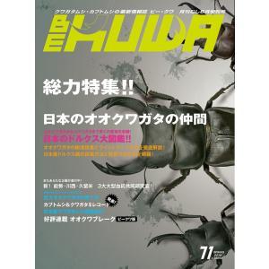 BE-KUWA 71号(メール便送料込み) ビークワ71号  ★ポイント8倍★