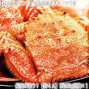 毛ガニ 北海道 雄武産(大型)480g前後×1尾(北海道産 ...