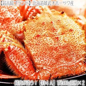 毛ガニ 北海道 雄武産(大型)480g前後×2尾(北海道産 ...