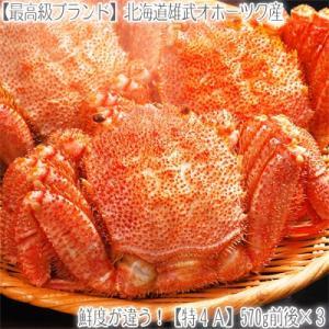 毛ガニ 北海道 雄武産(特大)570g前後×3尾(北海道産 ...