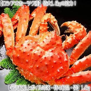 (送料無料 タラバガニ 特大 姿)特4級 1.6kg前後(最高級 タラバ蟹姿 タラバ姿 北海道直送 船上ボイル冷凍 ボイル済み)|dosanko-factory