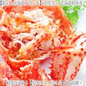 花咲ガニ 北海道 根室産(オス)700g前後×2尾(北海道産 ボイル済み 堅蟹 最高級)甘く濃厚な蟹身は絶品。ギフトに大好評、高評価ありがとうございます!|dosanko-factory