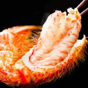 毛ガニ 北海道産(超特大)750g前後×2尾(北海道 太平洋産 襟裳など ボイル済み)甘い蟹身 濃厚な蟹味噌は絶品。ギフトに大好評、高評価ありがとうございます!|dosanko-factory|02