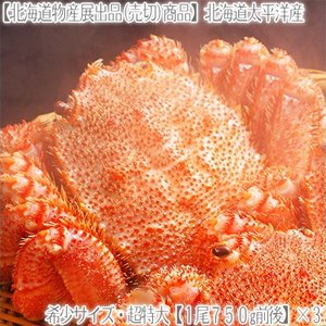 (送料無料 毛ガニ 超特大)北海道太平洋産 750g前後×3尾(最高級 毛蟹 北海道産 襟裳 濃厚 ...