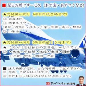 (北海道産 イカ)一夜干し いか 2枚入×3(北海道 干しイカ 肉厚 希少なサイズ 最高級 函館など道南メイン 中卸の目利き 母の日 父の日)|dosanko-factory|10