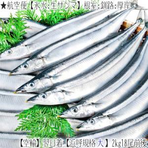 ■北海道から漁獲日に、航空便で発送、翌日お届け致します(高鮮度商品)  ■2kg前後(16尾前後入)...