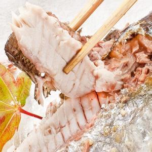 (送料無料 生サンマ 北海道産)根室 釧路(大 浜呼び名)4kg前後30尾前後(獲れたて 生さんま 水揚げ日に空輸で翌日着 日帰りトロさんま 最高級 秋刀魚)|dosanko-factory|03