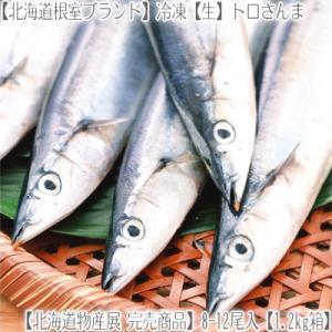 【送料無料 北海道産 さんま】根室産【冷凍】生サンマ 8-10尾1.2kg箱【獲れたて 船上急速冷凍 鮮度が違う 塩焼き 脂のり 秋刀魚 冷凍さんま 生さんま】|dosanko-factory