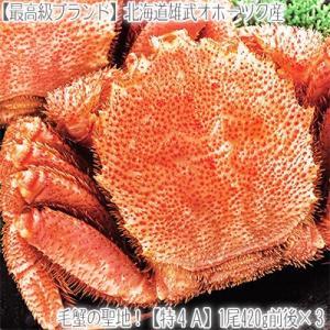 毛ガニ 北海道 雄武産(大型)420g前後×3尾 (北海道産 ボイル済み 最高級)甘い蟹身 濃厚な蟹味噌は絶品。ギフトに大好評、高評価ありがとうございます!|dosanko-factory