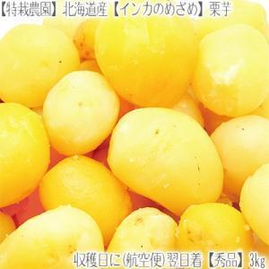 (送料無料 じゃがいも 北海道産)北海道 インカのめざめ 正規品 3kg(ジャガイモ 最高級 収穫日に空輸で翌日着!北海道ブランド 特別栽培農園産) dosanko-factory