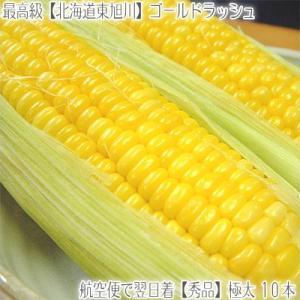 北海道産 ゴールドラッシュ 大粒 2L 10本(北海道 トウ...