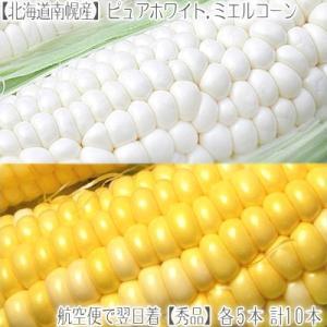 北海道 ピュアホワイト ミエルコーン 2種 10本セット(北...