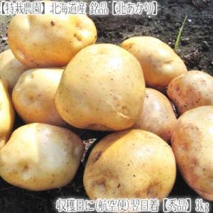 (送料無料 じゃがいも 北あかり 北海道産)北海道 きたあかり L 3kg(ジャガイモ 正規品 最高級 収穫日に空輸で翌日着!北海道ブランド 特別栽培農園産) dosanko-factory