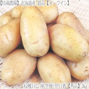 (じゃがいも ジャガイモ) 北海道産 メークイン L 3kg...