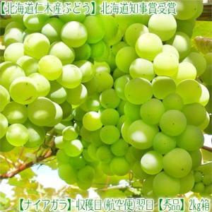 北海道 ぶどう 仁木産 ナイアガラ 2kg 8房前後(北海道...