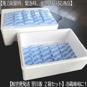 (送料無料)簡易 冷蔵庫 冷凍庫用 2箱セット(最短 空輸で翌日着!発泡スチロール・大判保冷剤 1個300g・厚手ポリ袋 電力供給制限用) dosanko-factory