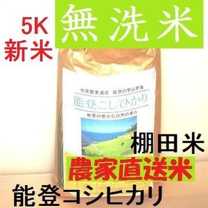 コシヒカリ 無洗米 新米30年産 特別栽培 棚田米(食味値86) 5K 世界農業遺産 能登里山の米|dotg-live|06