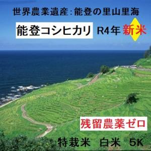 コシヒカリ 白米 新米30年産 特別栽培 棚田米(食味値86) 5K 世界農業遺産 能登里山の米|dotg-live