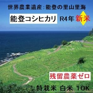コシヒカリ 白米 新米30年産 特別栽培 棚田米(食味値86) 5K×2 世界農業遺産 能登里山の米|dotg-live
