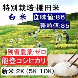 コシヒカリ 白米 新米30年産 特別栽培 棚田米(食味値86) 2K 世界農業遺産 能登里山の米|dotg-live