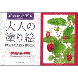 ¥5,000以上送料無料 ●品番:159277●入数: