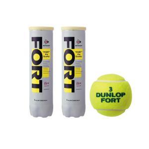 ダンロップ フォート(公認球) 硬式テニスボール 1箱120球(1缶4球入り 30缶)