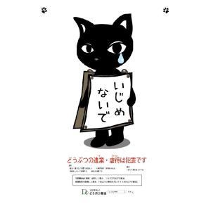 黒猫 クリアファイル|doubutu-kikin