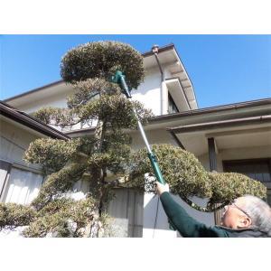 園芸 充電式 のこぎり付き園芸18点セット シャフト付き (見本品) |dougumanzoku