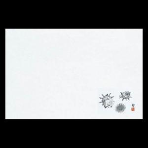 雲竜和紙マット尺3 さざえ 38×26cm 100枚|douguya-net