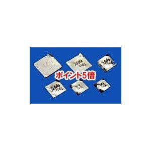 【ポイント5倍】 【直送品】 【分銅】 板状分銅 基準分銅型(洋銀(5mg以下はアルミ)) F2PGB-500M douguyasan