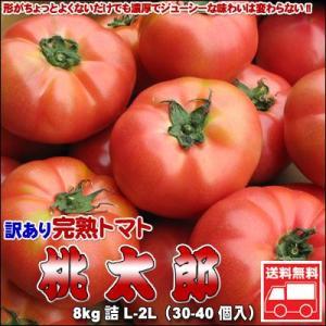トマト 訳あり 北海道とまと 桃太郎8kg 送料無料 沖縄は...